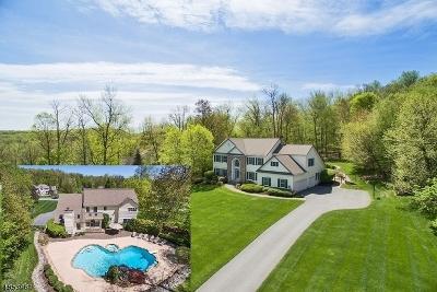 Vernon Twp. Single Family Home For Sale: 3 Oakhill Dr