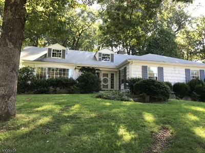 Chatham Twp. Single Family Home For Sale: 35 Van Houton Ave
