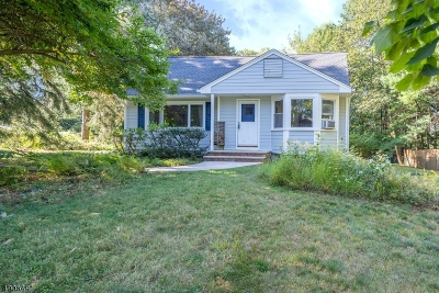 Randolph Twp. Single Family Home For Sale: 18 Crestwood Dr