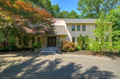Randolph Twp. Single Family Home For Sale: 2 Pinnacle Pt