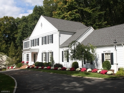 Morristown Town, Morris Twp. Single Family Home For Sale: 3 Cobblestone Ln