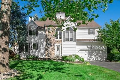 Hillsborough Twp. NJ Single Family Home For Sale: $539,000