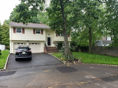 Fanwood Boro Single Family Home For Sale: 25 Roosevelt Ave