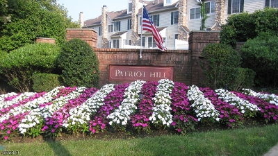 Bernards Twp. Condo/Townhouse For Sale: 3 Merchant Ct