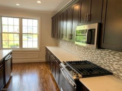 Branchburg Twp. Condo/Townhouse For Sale: 237 N Branch River Rd #237