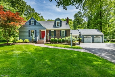 Bernards Twp. NJ Single Family Home For Sale: $689,900