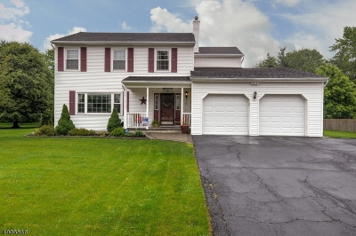 Hunterdon County Single Family Home For Sale: 18 Chestnut Trl