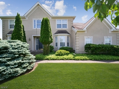 Franklin Twp. Single Family Home For Sale: 10 Nevius Pl