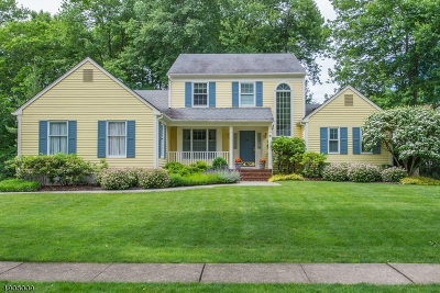 Morris Twp. Single Family Home For Sale: 8 Cottonwood Road