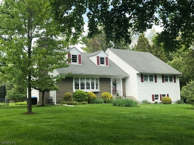 Bridgewater Twp. Single Family Home For Sale: 2187 Perrine Rd
