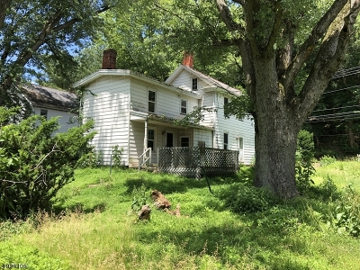 Alexandria Twp. Single Family Home For Sale: 540 Milford-Frenchtown Rd