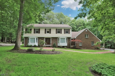 Franklin Lakes Boro Single Family Home For Sale: 716 Windswept Ln