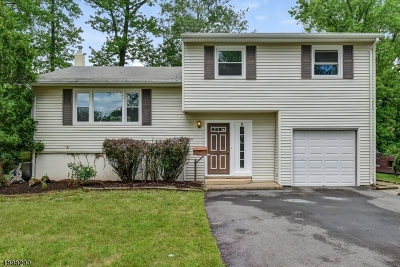 West Caldwell Twp. Single Family Home For Sale: 57 Johnson Ave
