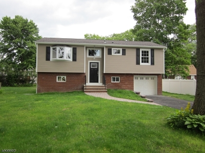 Parsippany Single Family Home For Sale: 24 Longport Rd