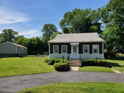 East Hanover Twp. Single Family Home For Sale: 292 River Rd
