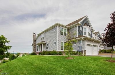 Warren County Single Family Home For Sale: 1 Blazingstar Way