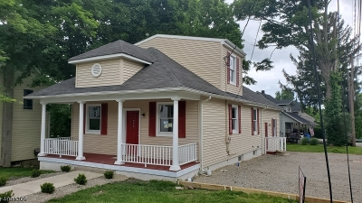 Sussex County Single Family Home For Sale: 14 Gov Haines St