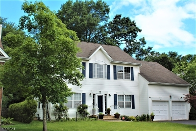 Scotch Plains Twp. Single Family Home For Sale: 15 Autumn Dr