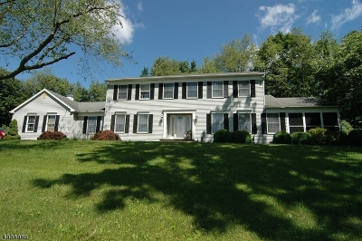 Warren County Single Family Home For Sale: 1 Garsson Ln
