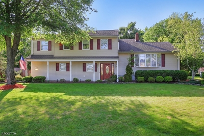 Clark Twp. Single Family Home For Sale: 111 Schwin Dr