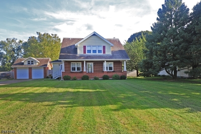 Holland Twp., Milford Boro Single Family Home For Sale: 450 Milford Mt. Pleasant
