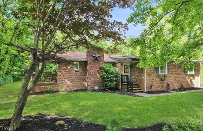 Passaic County Single Family Home For Sale: 23 Pierce Rd
