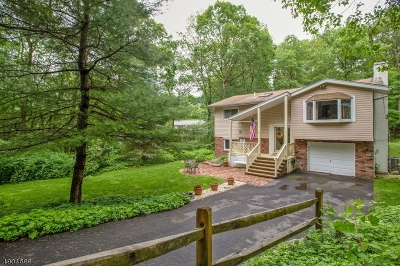 Sussex County Single Family Home For Sale: 22 Columbia Trl