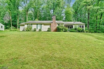 Warren Twp. NJ Single Family Home For Sale: $579,900