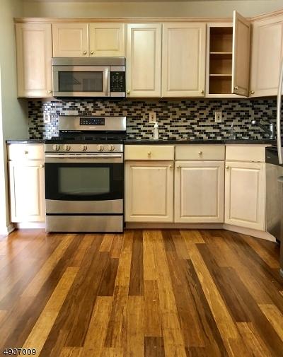 Bedminster Twp., Bridgewater Twp., Bernards Twp., Raritan Boro Rental For Rent: 10 Potomac Dr