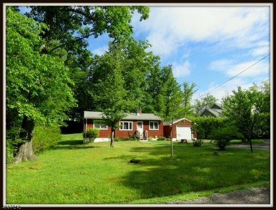 Sussex County Single Family Home For Sale: 18 Old Wood Lane