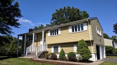 Passaic County Single Family Home For Sale: 4 Hampton Ter