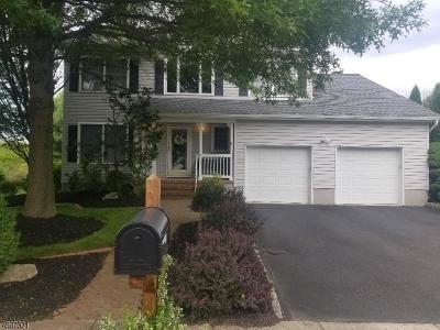 Hillsborough Twp. NJ Single Family Home For Sale: $549,900