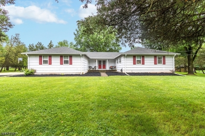 Bridgewater Twp. Single Family Home For Sale: 458 Steeplechase Ln