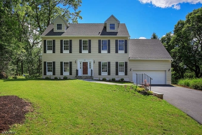 Peapack Gladstone Boro Single Family Home For Sale: 8 Wyckoff St