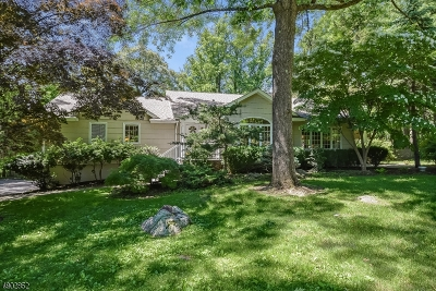 Boonton Twp. Single Family Home For Sale: 99 Kingsland Road