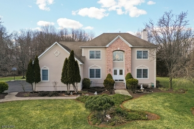 Montgomery Twp. Single Family Home For Sale: 6 Fieldflower Dr