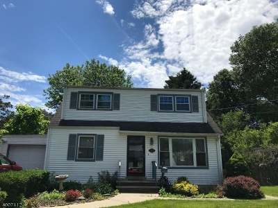Somerset County Single Family Home For Sale: 325 Redmont Rd