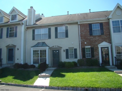 Bridgewater Twp. Condo/Townhouse For Sale: 3707 Pinhorn Dr