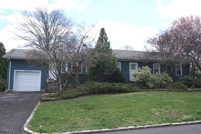 Clark Twp. Single Family Home For Sale: 102 Lefferts Ln