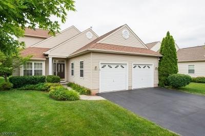 Franklin Twp. NJ Single Family Home For Sale: $535,000
