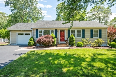 Bridgewater Twp. Single Family Home For Sale: 14 Edgewood Ter