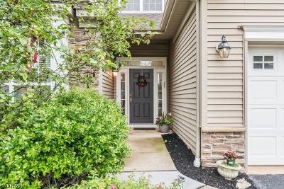 Franklin Twp. NJ Single Family Home For Sale: $605,000