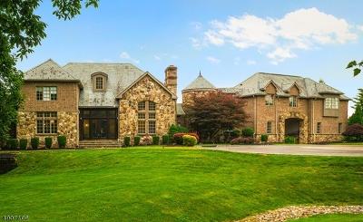 Hunterdon County Single Family Home For Sale: 18 Dogwood Dr