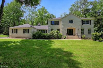 Warren Twp. NJ Single Family Home For Sale: $869,000