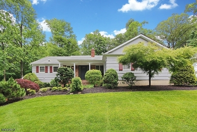 Berkeley Heights Twp. Single Family Home For Sale: 121 Lenape Ln
