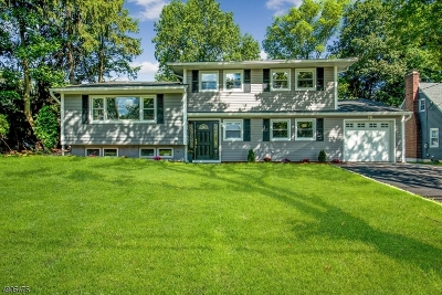 Springfield Twp. Single Family Home For Sale: 358 Meisel Ave