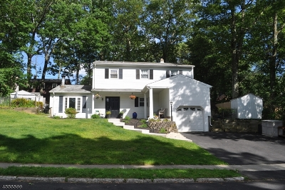 Stanhope Boro Single Family Home For Sale: 9 Oak Dr