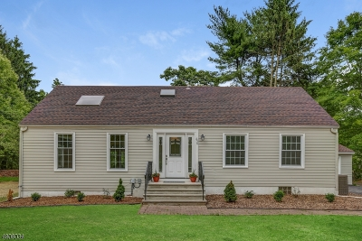 Montgomery Twp. Single Family Home For Sale: 656 Route 518