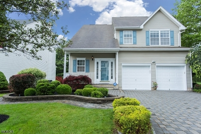 Bridgewater Twp. Single Family Home For Sale: 2 Delaney Court