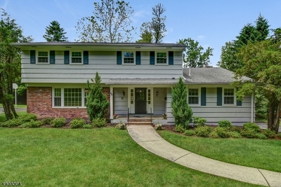 Berkeley Heights Twp. Single Family Home For Sale: 48 Summit Rd